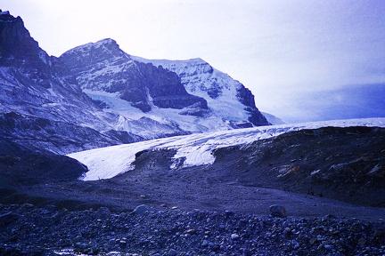 1987 canada 54