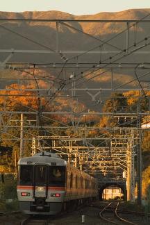 20081207 d01